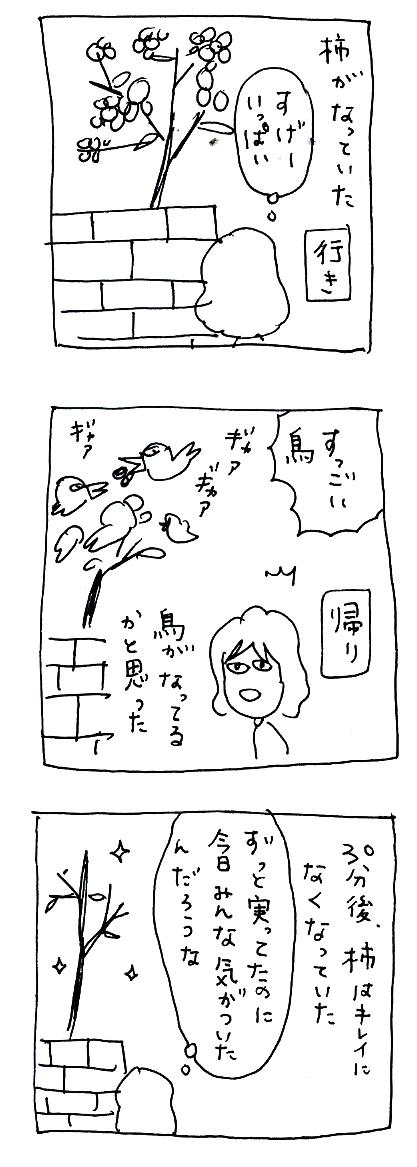 Img133